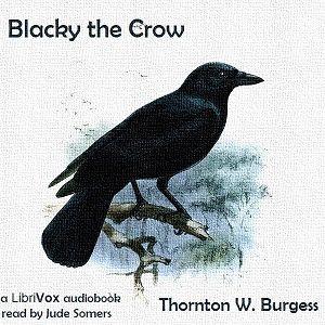 Download Blacky the Crow by Thornton W. Burgess