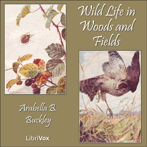 Wild Life in Woods and Fields, Arabella B. Buckley