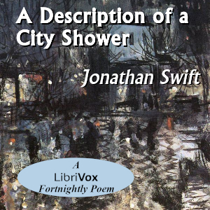 A Description Of A City Shower
