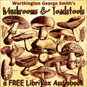 Download Mushrooms and Toadstools (Third Edition) by Worthington George Smith