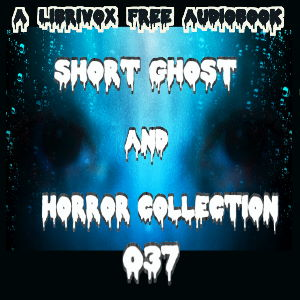 Short Ghost and Horror Collection 037