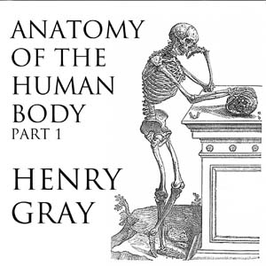 Anatomy of the Human Body, Part 1, Audio book by Henry Grayson