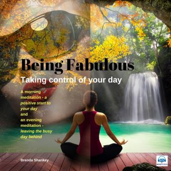 Taking Control of Your Day: Being Fabulous, Brenda Shanlkey