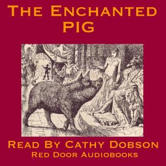 Enchanted Pig: A Traditional Fairy Story from Romania sample.