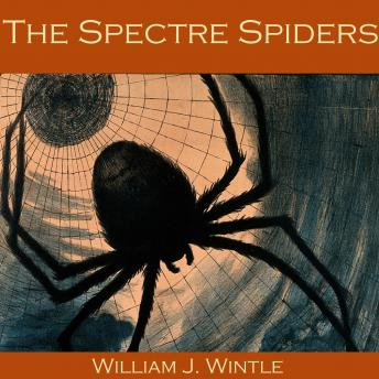 Spectre Spiders, William J. Wintle