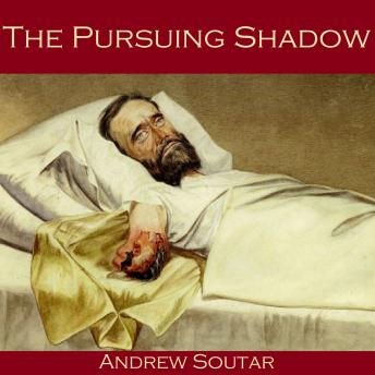 Pursuing Shadow, Andrew Soutar