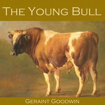 Young Bull, Geraint Goodwin