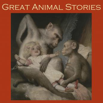 Great Animal Stories