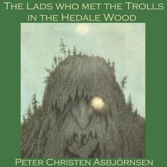 Lads who met the Trolls in the Hedale Wood, Peter Christen Asbjornsen