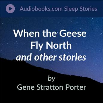 When the Geese Fly North, The Lost White Wild Strawberries, and A Wonder Tale