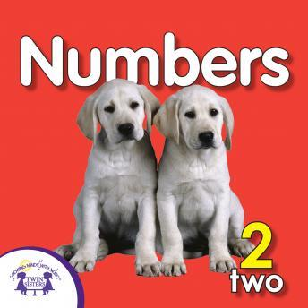 Numbers, Twin Sisters Productions