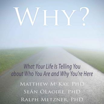 Why?: What Your Life Is Telling You about Who You Are and Why You're Here