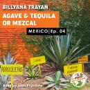 Mexico - Agave and Tequila Audiobook