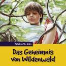 Das Geheimnis von Wildenwald Audiobook