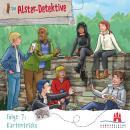 Die Alster-Detektive, Folge 7: Kartentricks (Ungekürzt) Audiobook