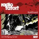 Radio Tatort rbb - Kaltfront Audiobook