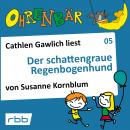 Ohrenbär - eine OHRENBÄR Geschichte, Folge 5: Der schattengraue Regenbogenhund (Hörbuch mit Musik) Audiobook