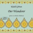 Der Wanderer (ungekürzt) Audiobook