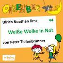 Ohrenbär - eine OHRENBÄR Geschichte, 4, Folge 44: Weiße Wolke in Not (Hörbuch mit Musik) Audiobook