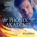 Das Feuergrab - Phönixakademie, Band 12 (ungekürzt) Audiobook
