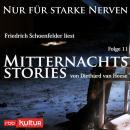 Mitternachtsstories von Diethard van Heese - Nur für starke Nerven, Folge 11 (Ungekürzt) Audiobook