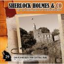 Sherlock Holmes & Co, Folge 29: Der Schrecken vom Central Park Audiobook
