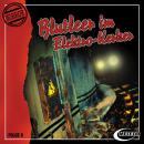 Meteor Horror, Folge 8: Blutleer im Elektro-Kerker Audiobook