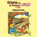 Arborex und der Geheimbund KIM, Folge 17: Magische Kräfte Audiobook
