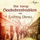 Das lustige Geschichtenbüchlein (Hörspiel) Audiobook