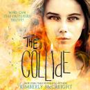 The Collide Audiobook