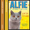 Alfie Cat In Trouble, Rachel Wells