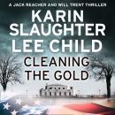 Cleaning the Gold Audiobook