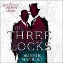 The Three Locks Audiobook