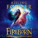 Fireborn: Twelve and the Frozen Forest Audiobook