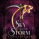 A Sky Beyond the Storm Audiobook