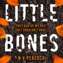 Little Bones Audiobook