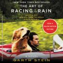 Art of Racing in the Rain, Garth Stein