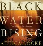 Black Water Rising, Attica Locke