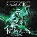 Boundless: A Drizzt Novel Audiobook