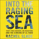Into the Raging Sea: Thirty-Three Mariners, One Megastorm, and the Sinking of the El Faro, Rachel Slade