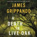 Death in Live Oak: A Jack Swyteck Novel, James Grippando