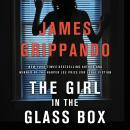The Girl in the Glass Box: A Jack Swyteck Novel Audiobook