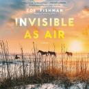 Invisible as Air: A Novel Audiobook