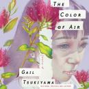 The Color of Air: A Novel Audiobook