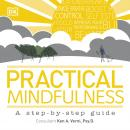 Practical Mindfulness Audiobook