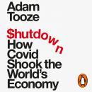 Shutdown: How Covid Shook the World's Economy Audiobook