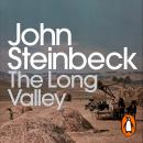 The Long Valley Audiobook