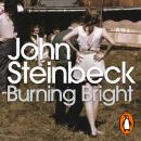 Burning Bright: A Play in Story Form Audiobook