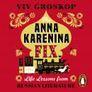 The Anna Karenina Fix: Life Lessons from Russian Literature Audiobook