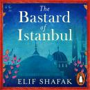 The Bastard of Istanbul Audiobook